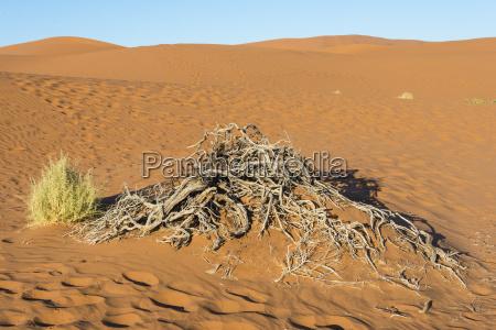 orken afrika namibia sevaerdigheder sevaerdighed torhed