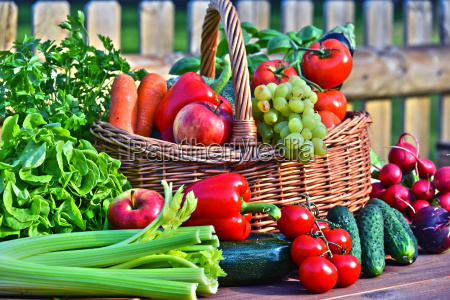 forskellige friske okologiske grontsager i kurvekurv