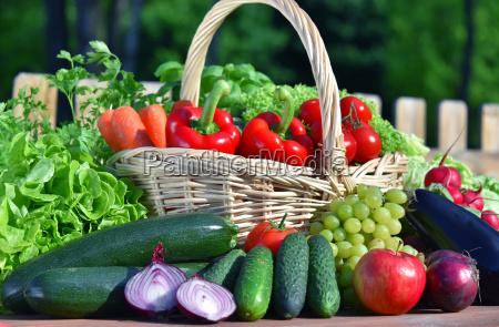 variation af friske okologiske grontsager i