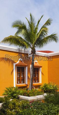 hus bygning arkitektonisk farve trae vindue