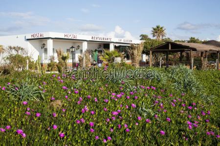 en restaurant med en blomsterhave zahora
