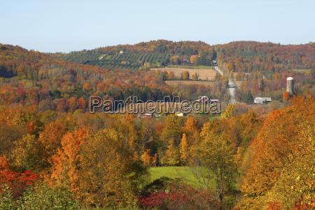 a landscape of farmland in autumn