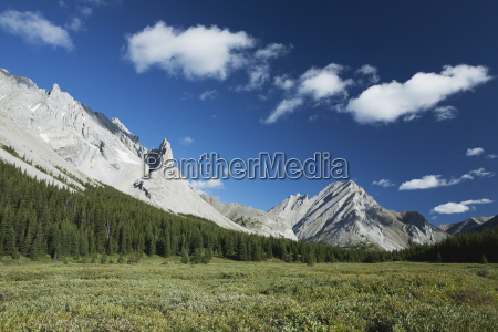 mountain meadow framed by mountains and