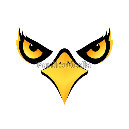 eagle head on white background vector