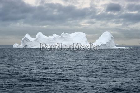 large iceberg floating in bransfield strait