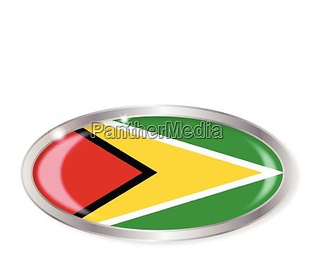 guyanas flag oval knap