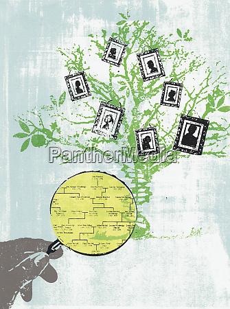hand holder forstorrelsesglas studere family tree
