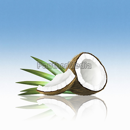 stykker af kokos