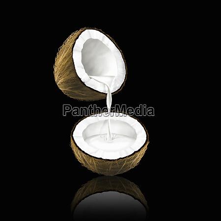 kokosmaelk haelde fra en kokos halv