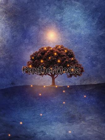 glowing lights shining around single tree