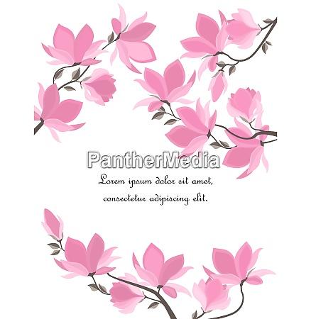 vektor magnolia blomster