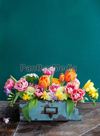 farverige forarsblomster