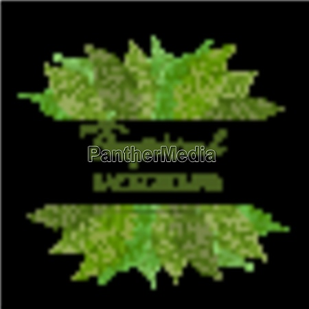 fern leaf vector background with