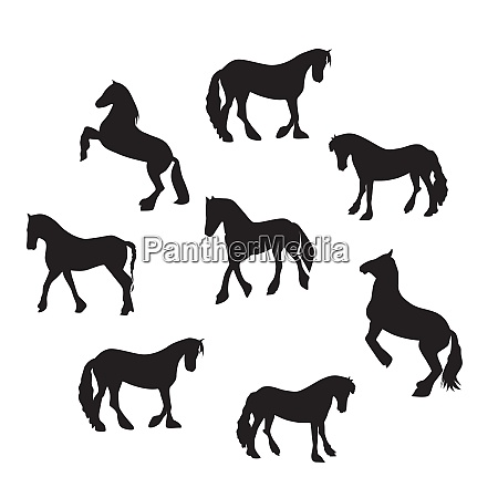black horse silhouette set vector illustration