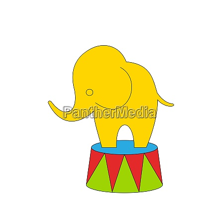 cartoon circus elephant vector illustration