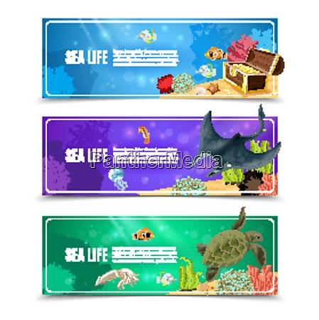 varianter af undersoiske havliv og havbunden