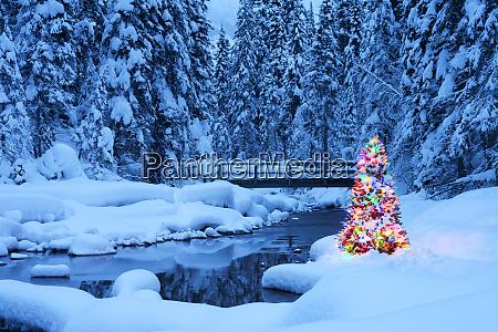 juletrae ved siden af en stream