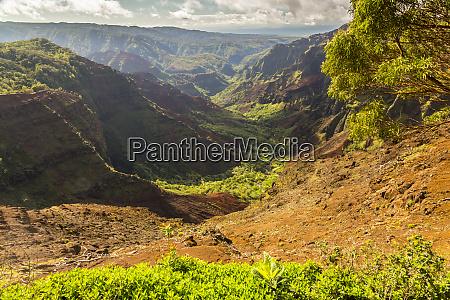 usa hawaii kauai waimea canyon landskab