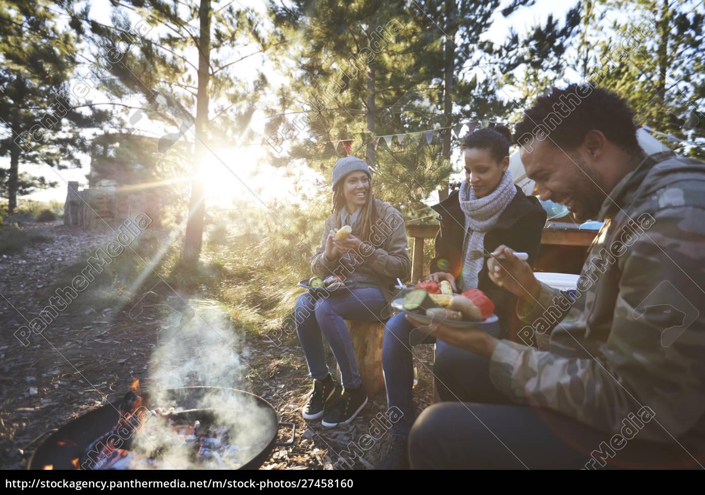 glade, venner, spiser, på, solrig, campingplads - 27458160