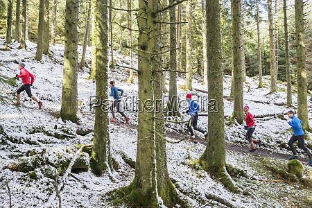 venner jogging i snedaekkede skove