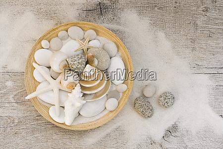 kystnaere still life bowl med skaller