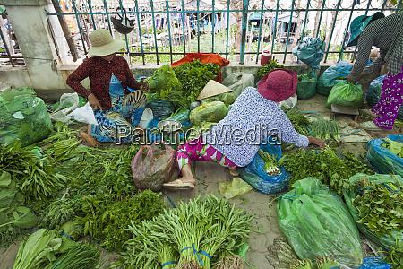 vietnam mekong delta chau doc hau