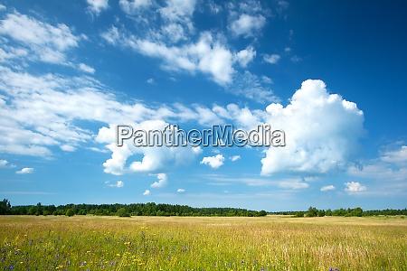 mark og smukke overskyet himmel