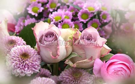 pink blomster modre dag stilleben