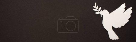 white, background, nobody, horizontal, element, paper - B367565304