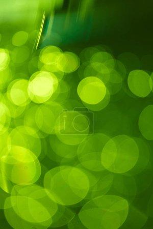 Billed-id B320309080